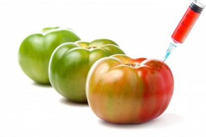 OMG - Organisme modificate genetic