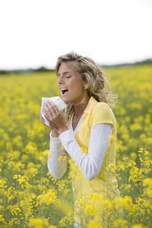 Rinita alergică sezonieră (febra fânului)