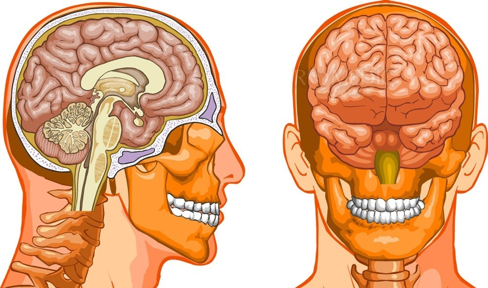 sincronizarea creierului pierderea în greutate)