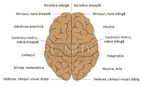 Tumorile cerebrale | onlyus.ro
