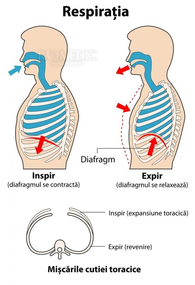CT al organelor toracice + compactarea pe coaste - Lipom