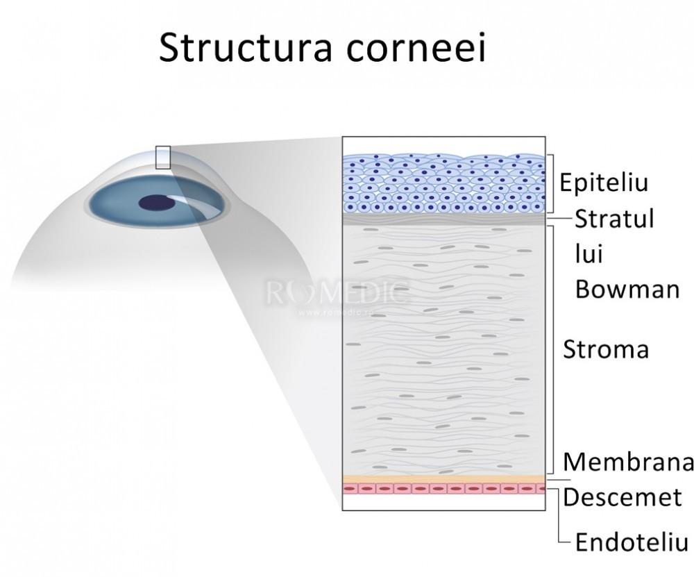 acuitatea vizuală a corneei