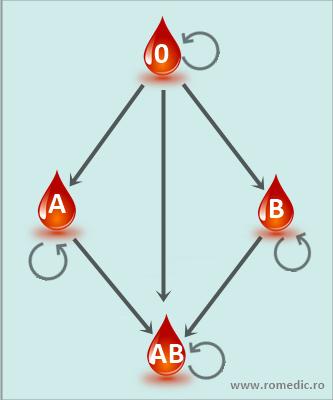 schema compatibilitatii grupelor de sange)