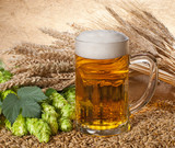 Tratamente de ingrijire cu bere