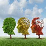 Sănătatea creierului - cum o menținem?