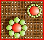 Iluziile optice (vizuale)