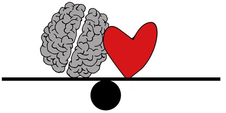 Conexiunea creierului și a vederii. Să înțelegem vederea