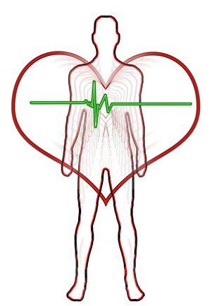 Principalele boli cardiovasculare