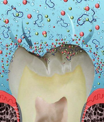 Pasta de dinți cu peptide pentru reducerea cariilor