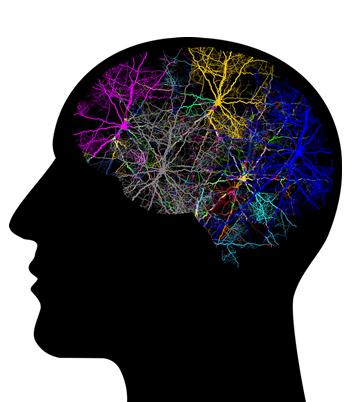 Cum afectează sedentarismul memoria?